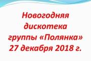 Новогодняя дискотека группы «Полянка» 27 декабря 2018 г.
